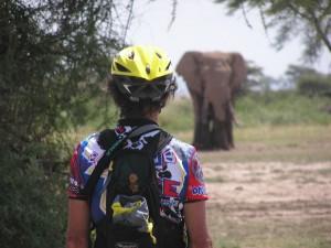 Radtouren in Tansania - Fahrrad-Tour Serengeti, Sansibar, Kilimanjaro